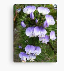 Macro Flowers Canvas Print
