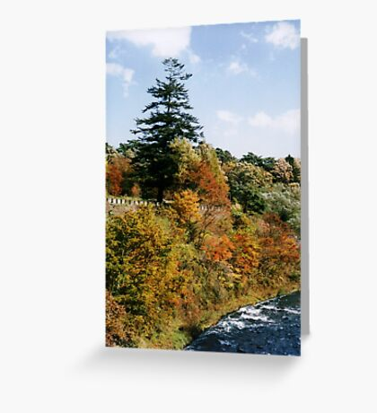 Autumn in Nikko Greeting Card