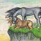 grey and chestnut horse dappled light by Stephanie Small