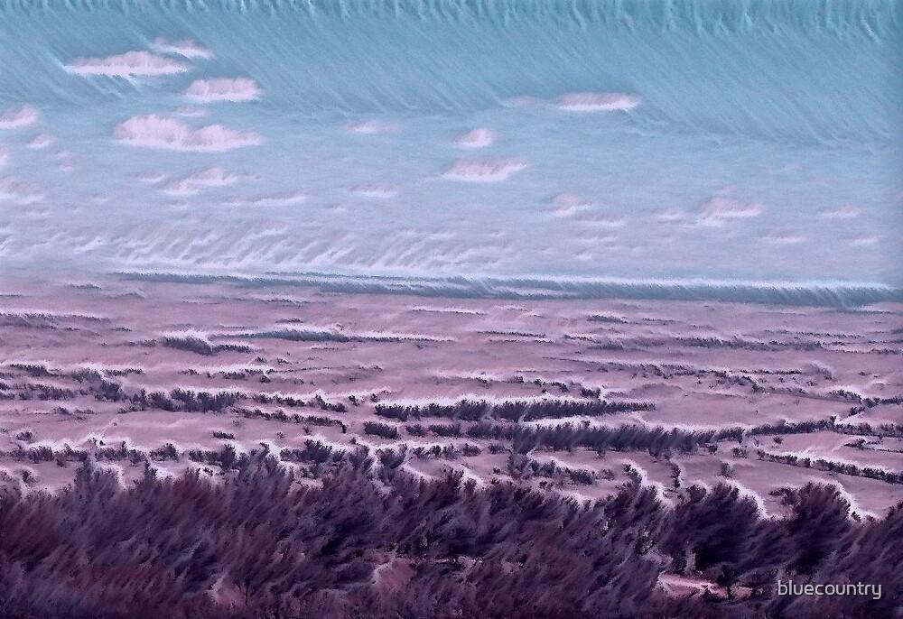 mt tarrangower by bluecountry