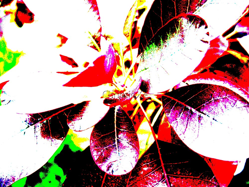 Abstract Gardens by ChrissieXe
