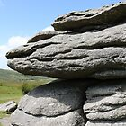 Combestone Tor #3 by kalaryder