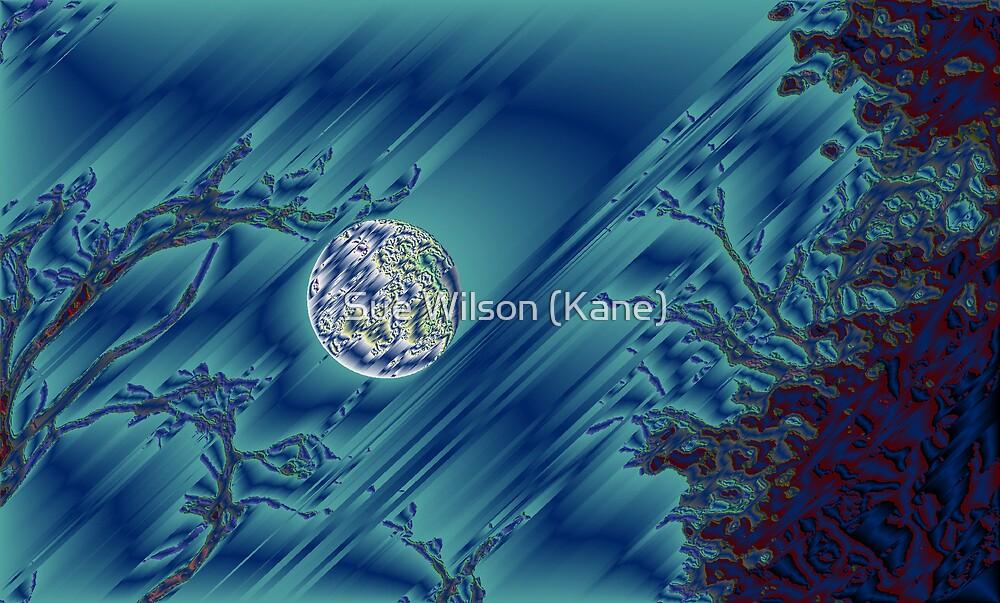 Metal Moon by Sue Wilson (Kane)