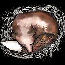 Sleeping fox by Jenny Wood