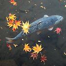 Autumn koi by Joumana Medlej