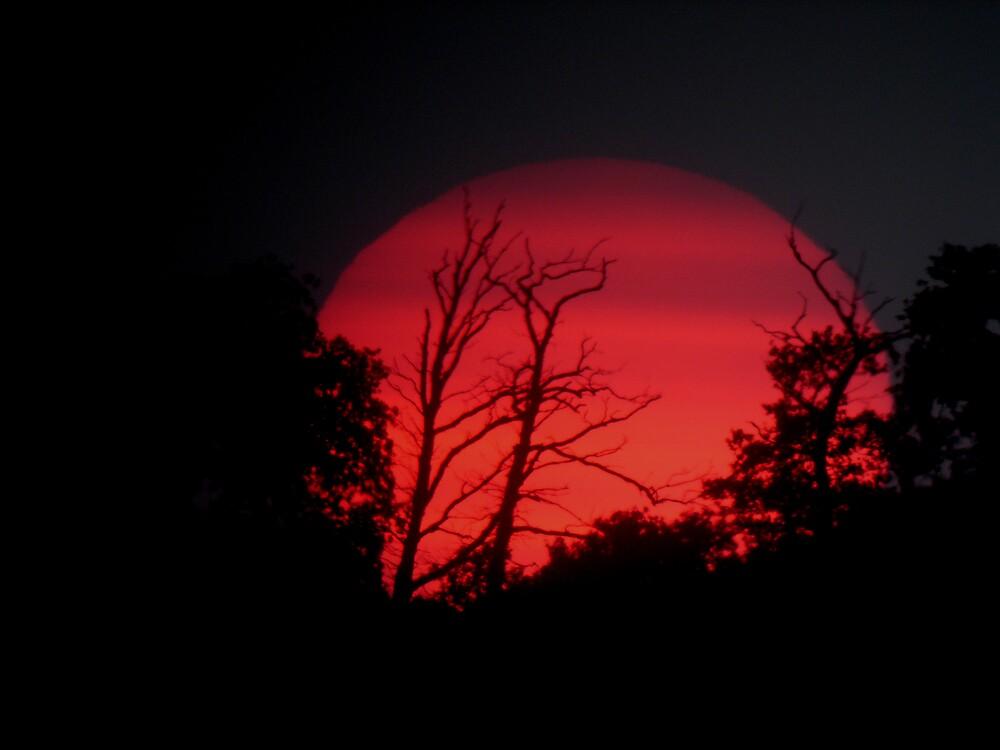Belvide Sunset by Monster