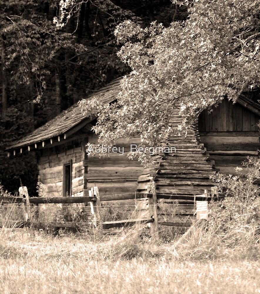 Cabin in the woods by Aubrey  Bergman