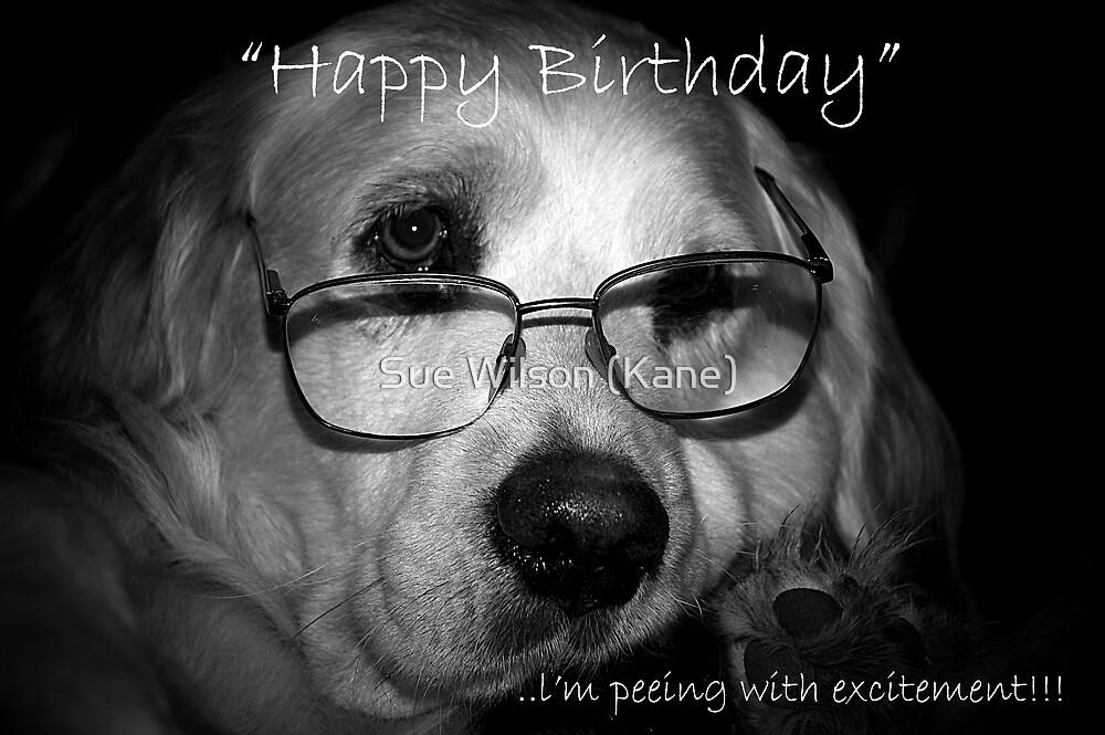 happy birthday....excitement by Sue Wilson (Kane)