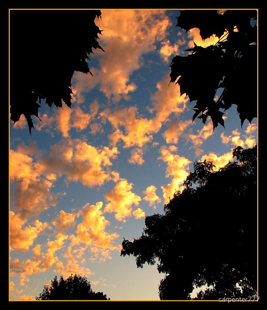Sky by carpenter777