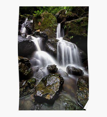 Ladore Falls Wet Rocks Poster