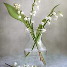 Lily of the valley by Mandy Disher