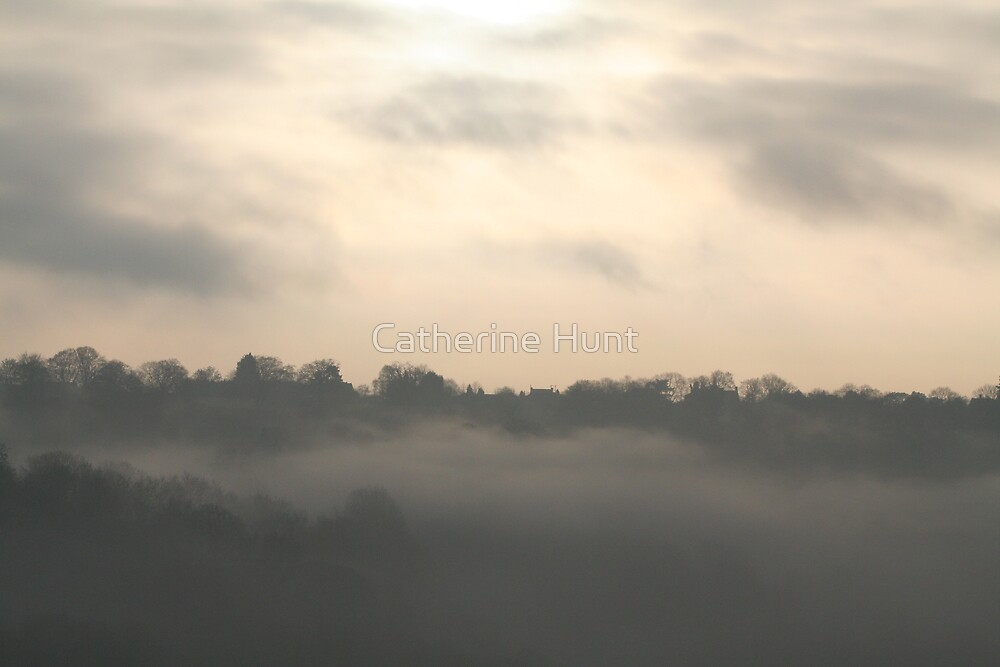 Foggy Valley by Catherine Hunt