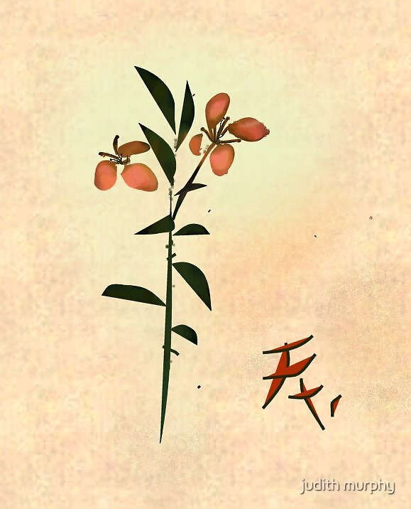 Chinese flower by judith murphy