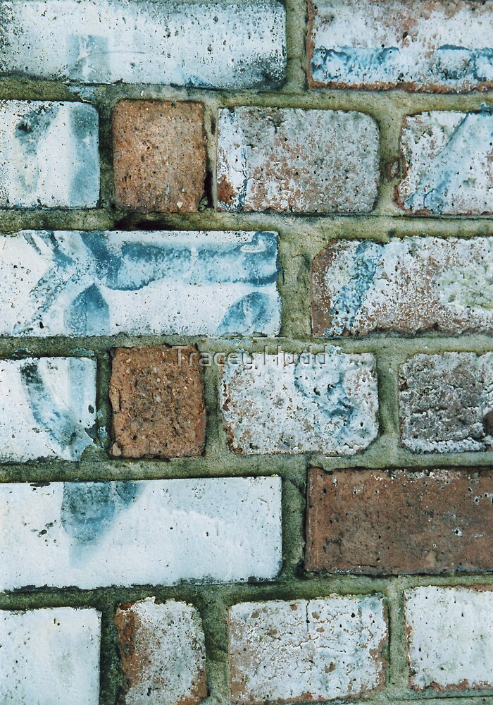 Wall by Tracey Hudd
