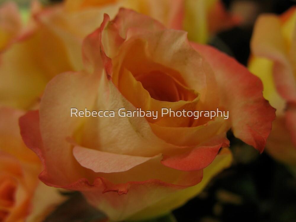 Goodbye Becky by Rebecca Garibay Photography