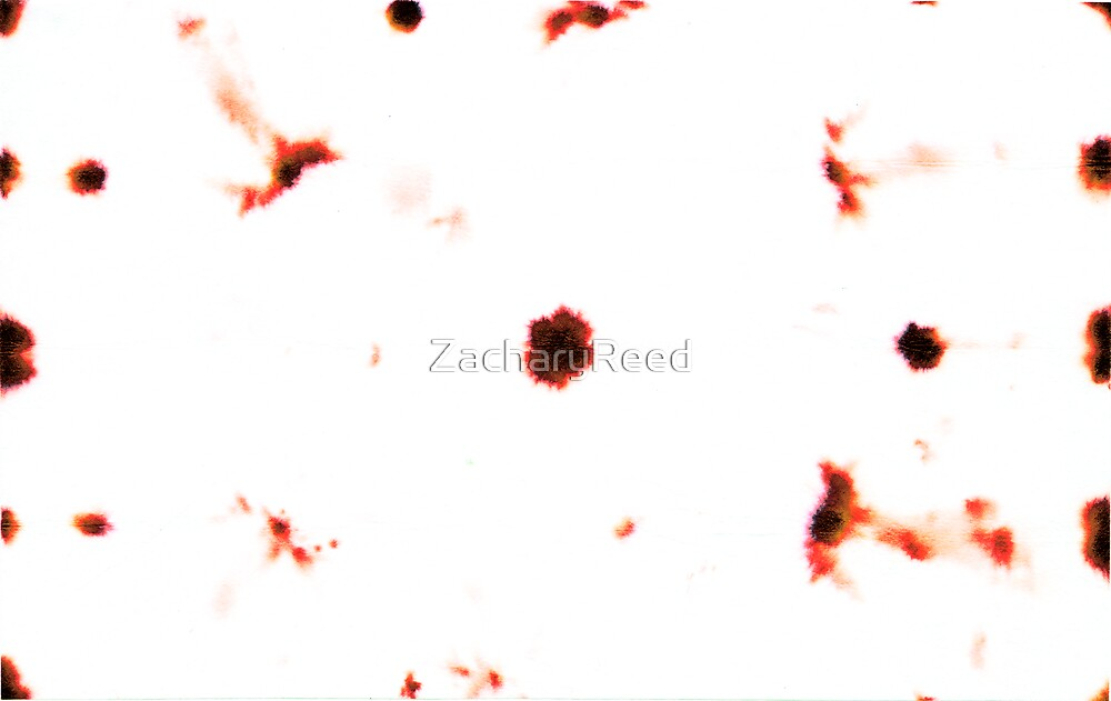 00022 by ZacharyReed