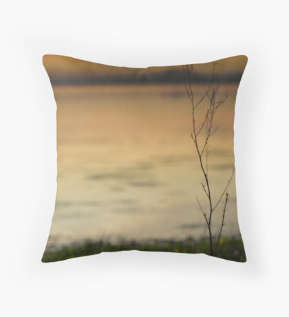 @ the waters edge Throw Pillow