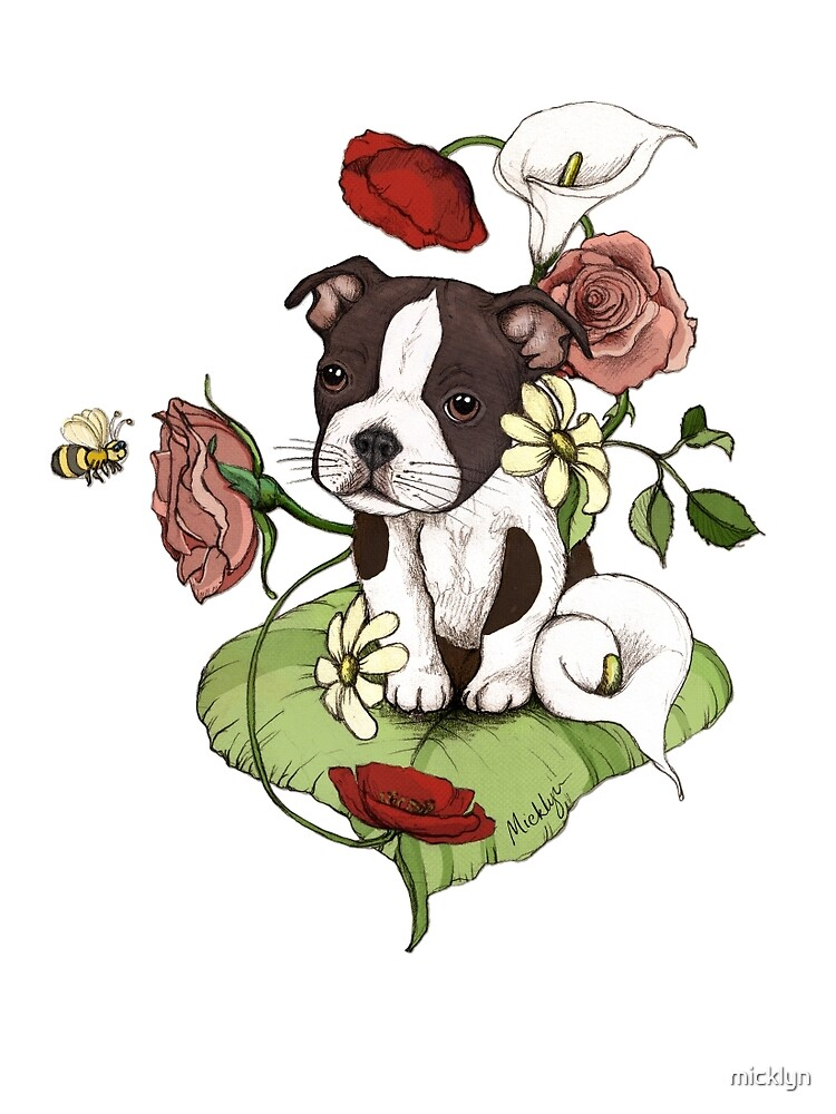 Boston Terrier Puppy Bouquet by micklyn