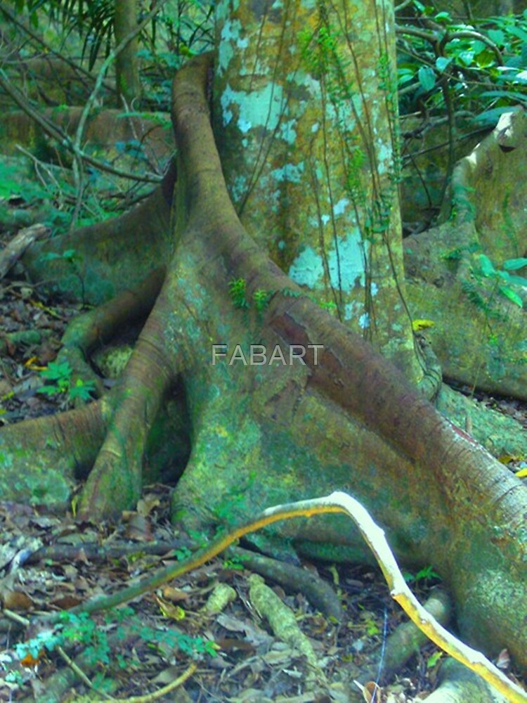 Fig Tree by FABART