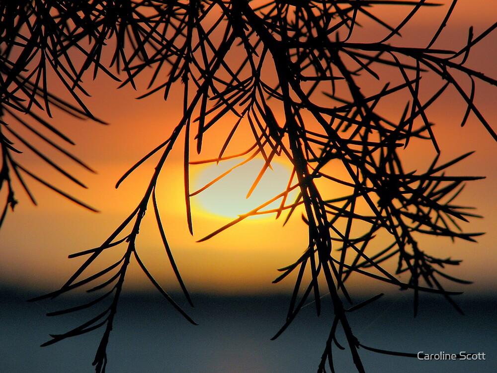 Mandurah sunrise 3 by Caroline Scott