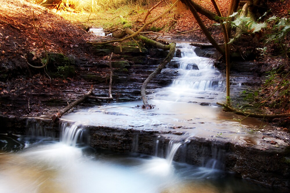 Lumb Brook by Thelonius