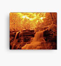 Brandywine Falls Canvas Print