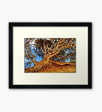 The Ravages of Time! Framed Print