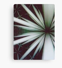 Modular Function Canvas Print