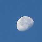 Oh I spot the moon! teriffic..... I say! by Starr1949
