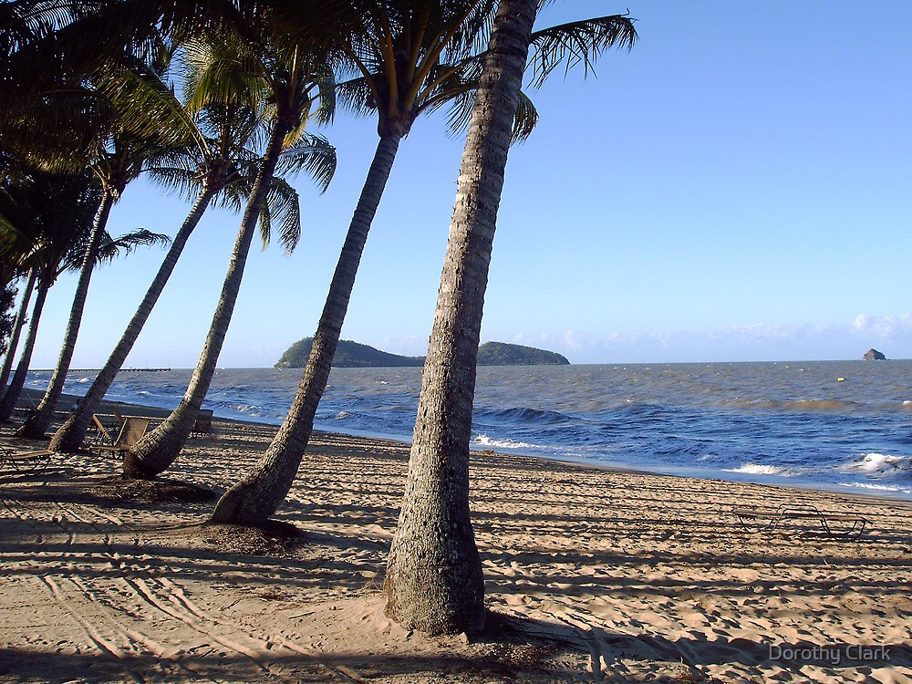 Palm Cove by Dorothy Clark