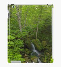 Green Glade iPad Case/Skin