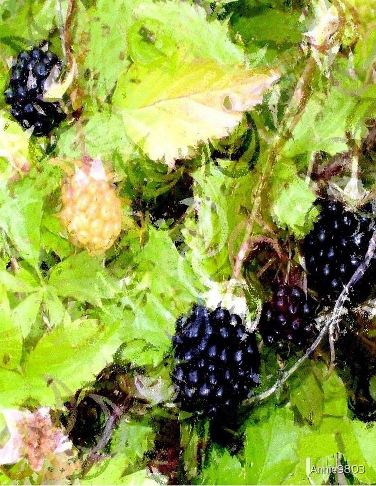 Berries by Annie9803