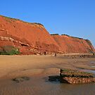 Red Cliffs of Devon by RedHillDigital