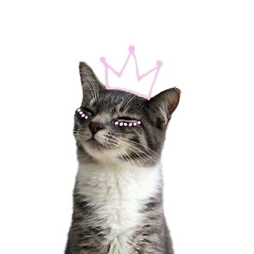 princess kitty by katielavigna