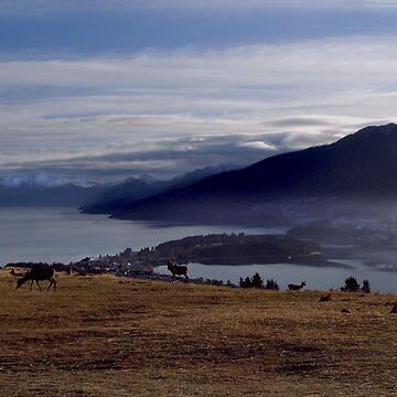 New Zealand Landscape by Dimages