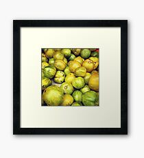 Green Tomatoes Photo Framed Print