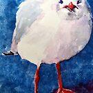 gull by pamfox