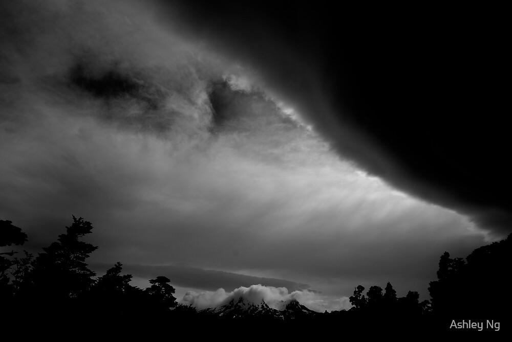 Brewing Storms by Ashley Ng