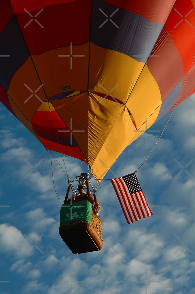 American Hot Air Balloon by Holly Werner