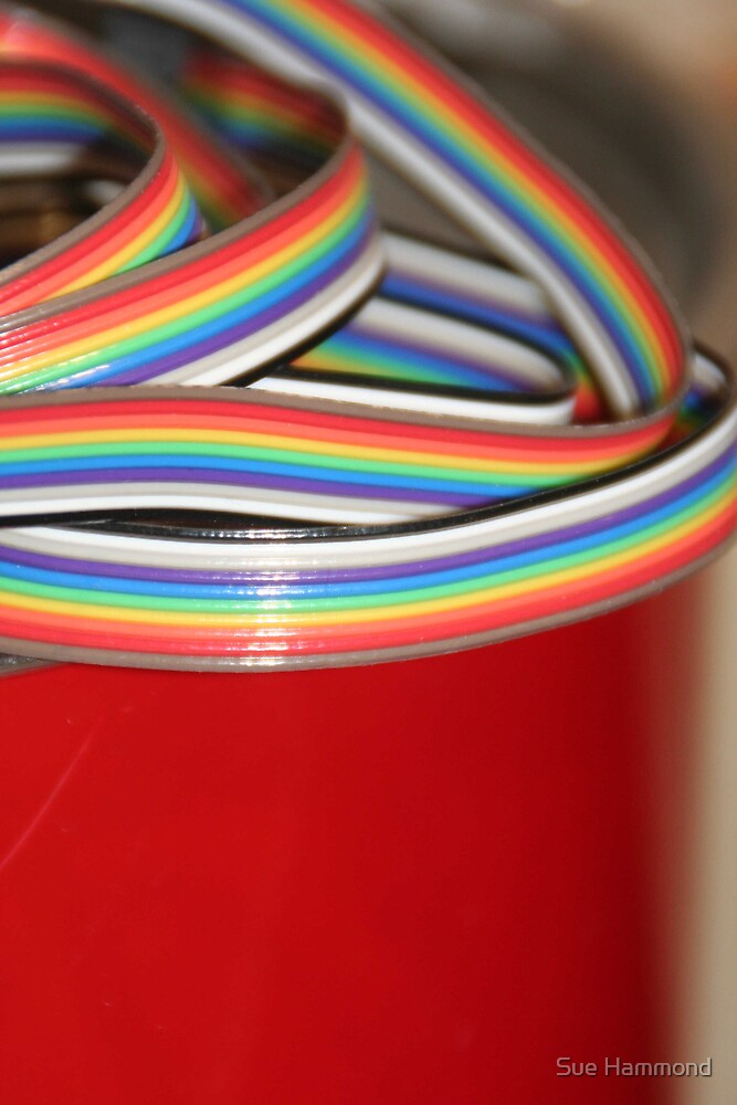 Rainbow by Sue Hammond