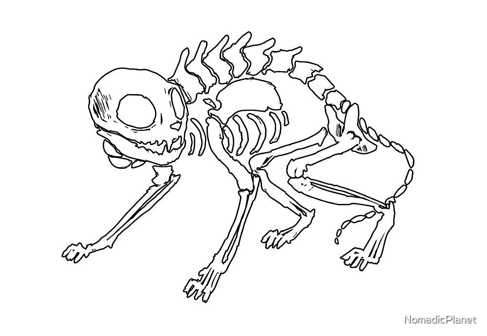 """Cat Skeleton"" by NomadicPlanet | Redbubble"