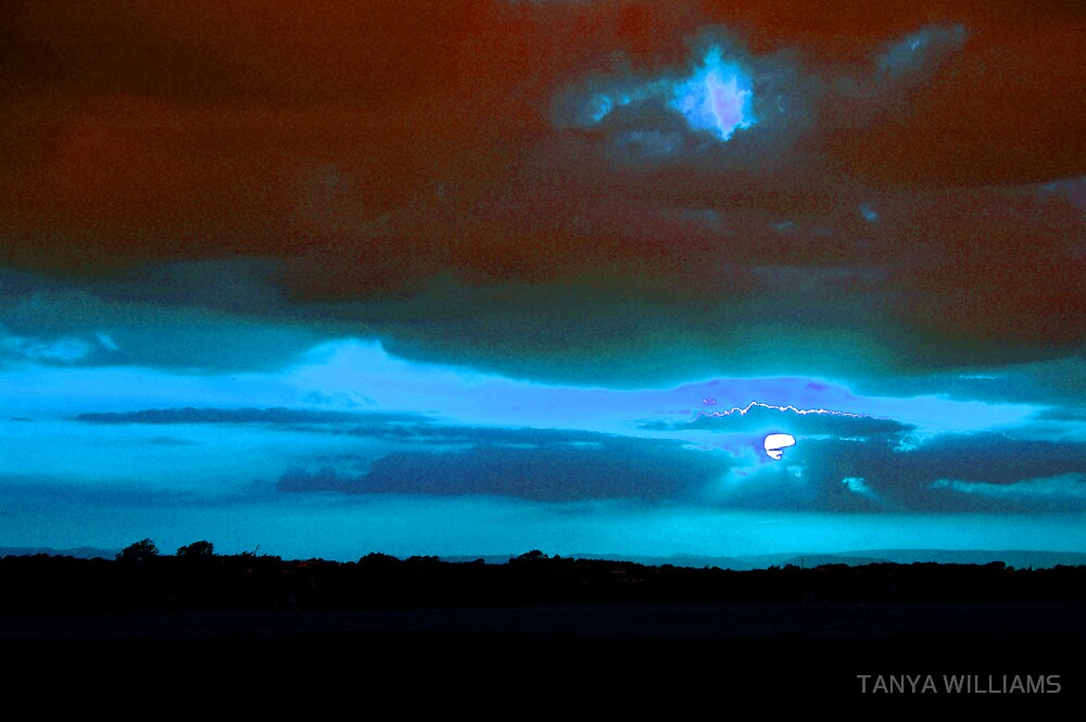 MOONLIT NIGHT! by TANYA WILLIAMS