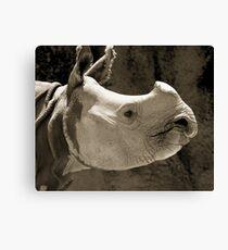Mr Rhino@Taronga Zoo, Sydney Canvas Print