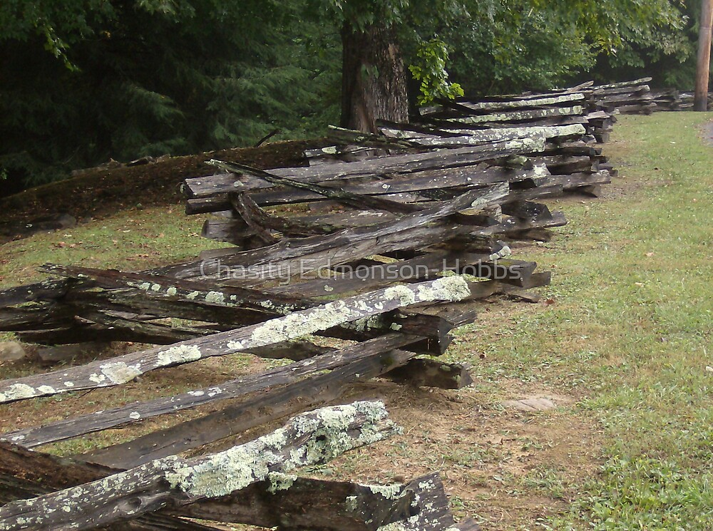 Old fence in color by Chasity Edmonson-Hobbs