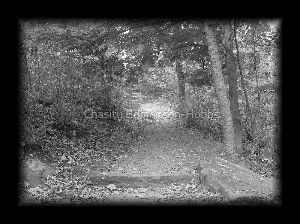 Path in black and white by Chasity Edmonson-Hobbs