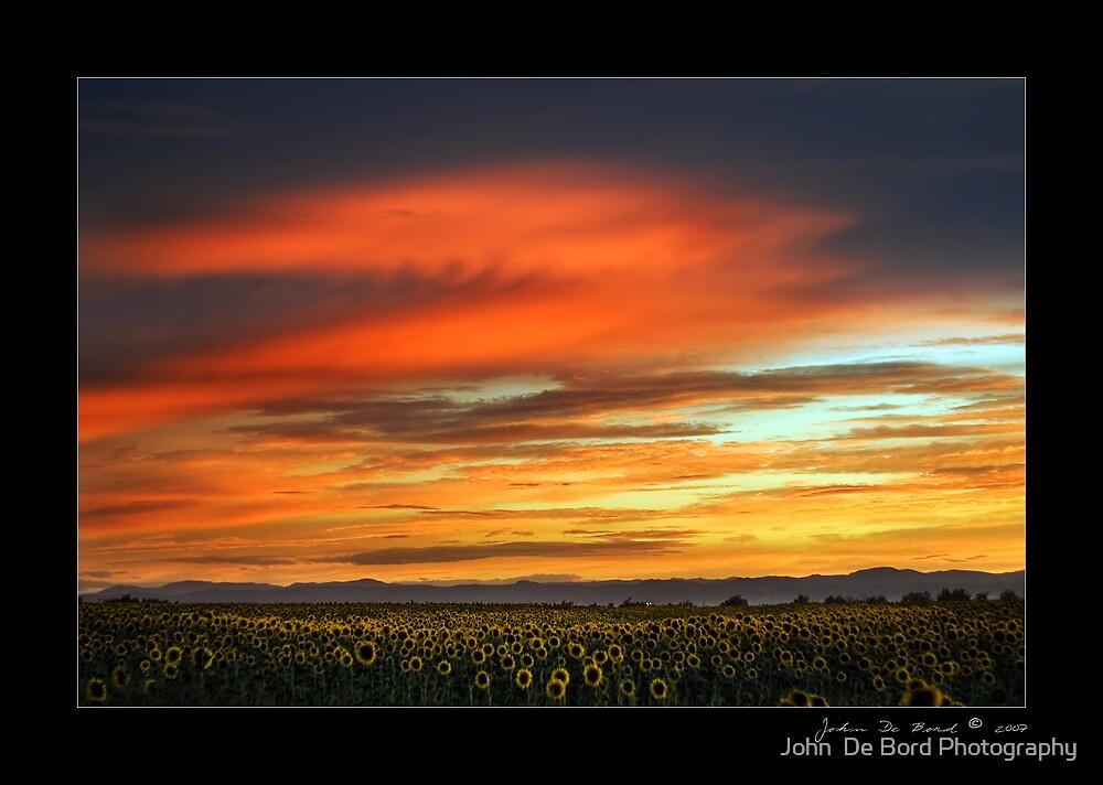 Sunflower Sunset by John  De Bord Photography