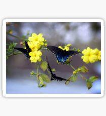 Attraction Of The Winter Jasmine Sticker