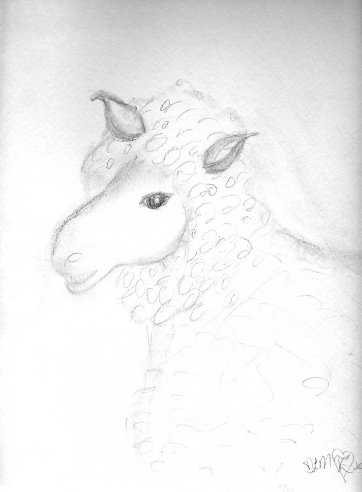 sketch of a sheep by Dawna Morton