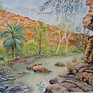 Amalia Gorge, Kimberley, Australia by Virginia  Coghill