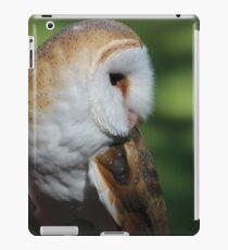 Casper - 002 iPad Case/Skin